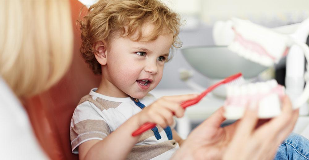 dentist header image